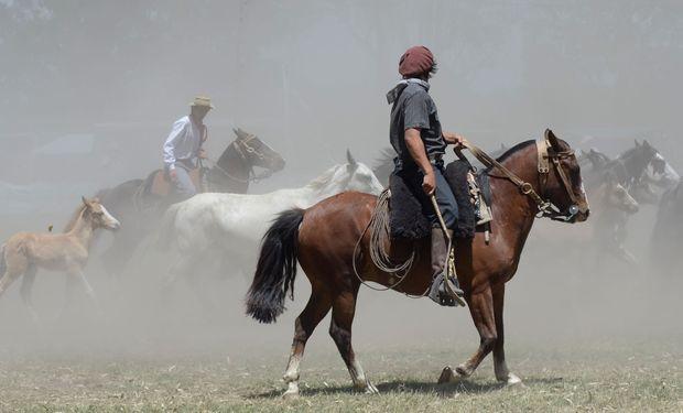 Ese gaucho presente en sus épocas constituyó una clase social representativa para la Argentina.
