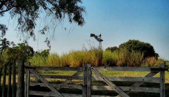 Ventas de inmuebles rurales: ¿Ganancias o ITI?