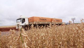 Bitrenes en Misiones: una alternativa a los elevados costos logísticos