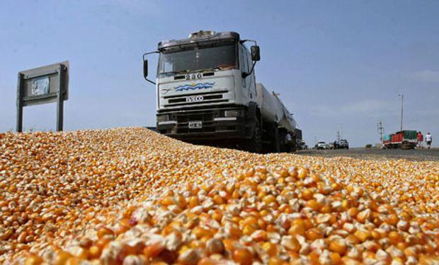 El maíz presenta el mayor costo por hectárea.