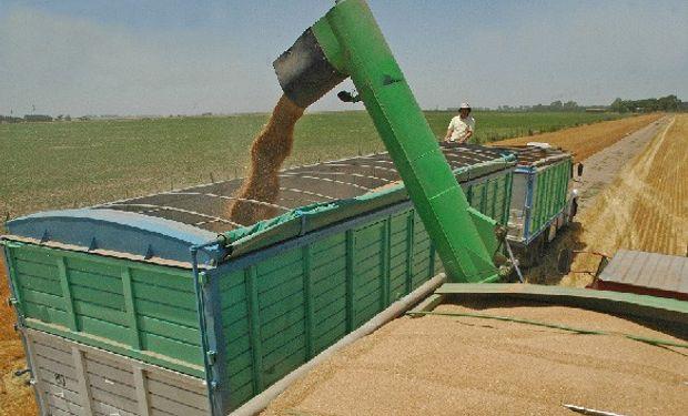 Pérdidas de granos por transporte en camiones