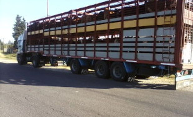 Evalúan sumar exigencias para el transporte de animales