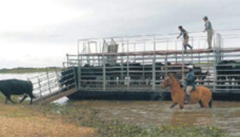 Santa Fe: río Paraná tocará altura máxima en 2 semanas