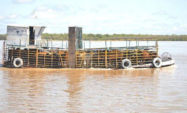 Inundaciones complican el traslado de ganado