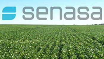 La sanidad, eje del trabajo conjunto del Senasa y el BID