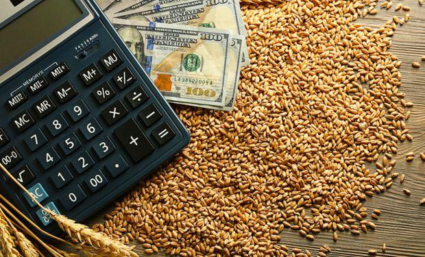 Por qué el trigo sube en el mundo y baja en Argentina
