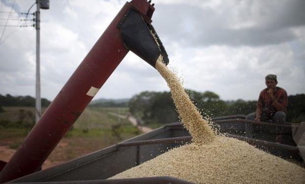 Finalmente se exportó trigo en diciembre