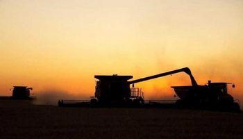 El final de la cosecha de trigo se encontró con lluvias inoportunas