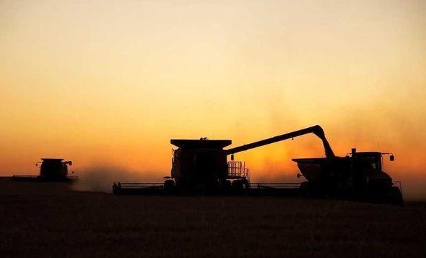 En la provincia de Buenos Aires se cosecha el 70% de la producción argentina de trigo.