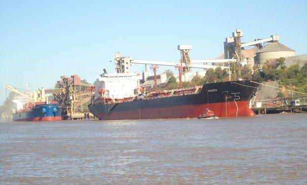 Argentina regresó al mercado internacional de trigo.