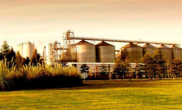 Ofrecen realizar convenios con precios superiores a los del trigo 2017/18 para captar el interés de los productores.