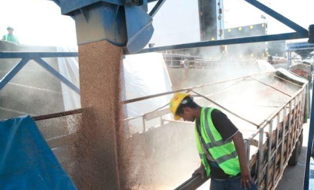 Desde Brasil dan cuenta de que no sólo continuarán comprando trigo, sino que prevén incrementar la demanda.