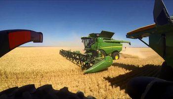 La otra cara de La Niña: Australia se prepara para la segunda mayor cosecha de trigo de la historia