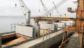 Fuerte demanda de trigo en EE.UU. afecta el abastecimiento de Brasil