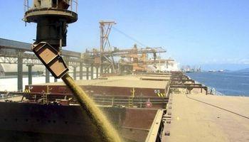 Brasil necesita del trigo del Mercosur