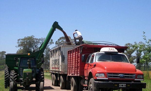 AFA pagó en promedio por el trigo $1.300 la tonelada, precio que incluía tanto el de mala como el buena calidad.