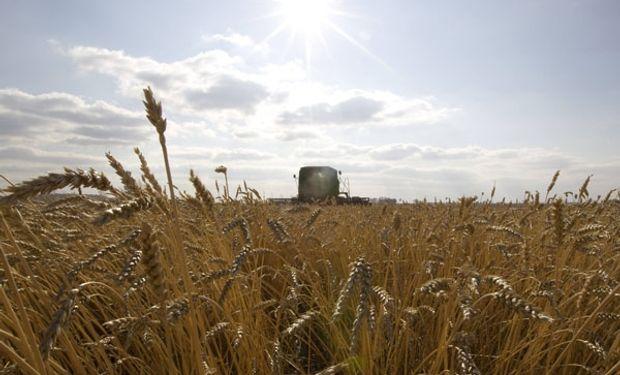 Una vez más es momento de pasar la tormenta, y el productor agrícola lo sabe.