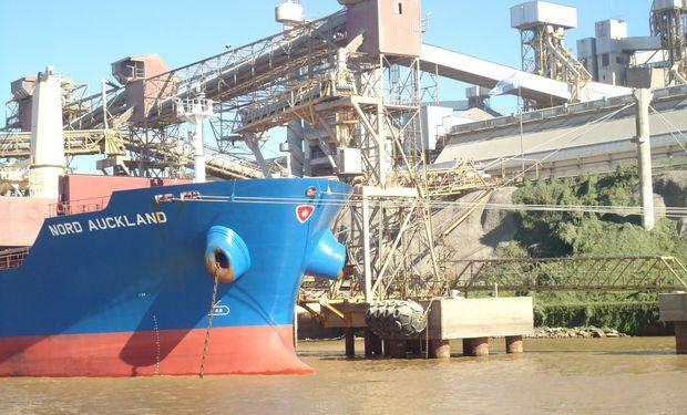 El trigo argentino redujo su participación en Brasil.