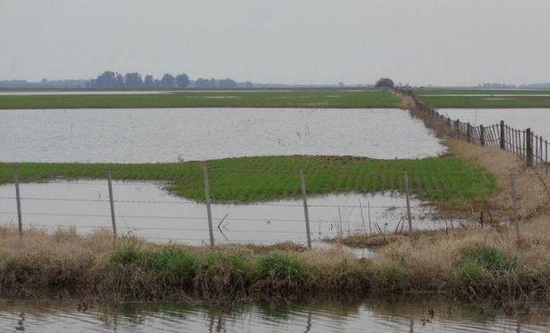 El nivel de agua comienza a descender.