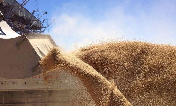Exportadores tienen más trigo del que seguramente podrán despachar.