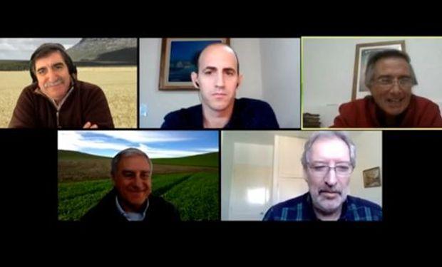 ¿Cómo lograr altos rendimientos? La recomendación de 4 asesores privados para el manejo del trigo