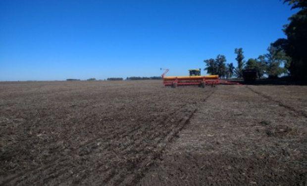La siembra de trigo y cebada continúan avanzando en todo el país y ya se lograron implantar más de 5.300.000 hectáreas con ambos cereales.