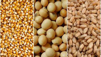 Comercialización de granos: la soja avanza por la escalera, trigo y maíz por el ascensor