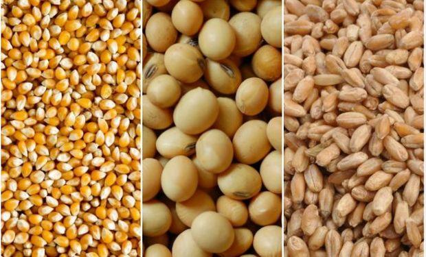 Datos publicados por la Dirección de Mercados Agropecuarios.