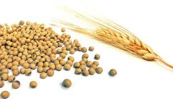 Temas del día: soja, trigo, temperaturas mínimas, default, paro, retenciones, AFIP