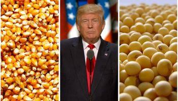 ¿Cómo impacta el efecto Trump sobre los granos?