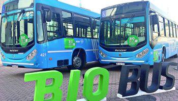 Tucumán quiere replicar el uso del biodiésel en el transporte