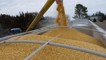 Fijan un nuevo aumento salarial para trabajadores que manipulan y almacenan granos