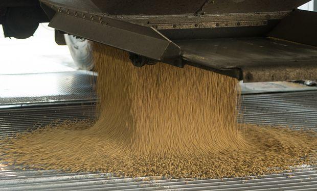 Las exportaciones de soja estuvieron por debajo de lo esperado.