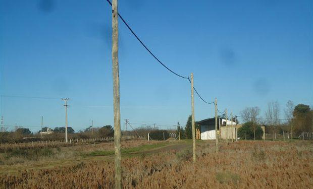 Se han reportado nuevamente una innumerable cantidad de delitos en los ámbitos rurales.