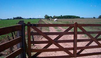 Ingresos brutos en Santa Fe: así quedaron las alícuotas y exenciones para el campo y la industria