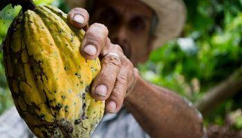 Una fintech creó un modelo alternativo de financiamiento para pequeños productores