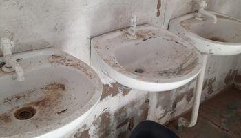 Detectan irregularidades en un establecimiento dedicado a la vid en Catamarca