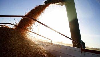Cambios en el Registro Único de la Cadena Agroalimentaria (RUCA)