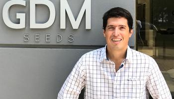 El trigo abre nuevas oportunidades para los productores