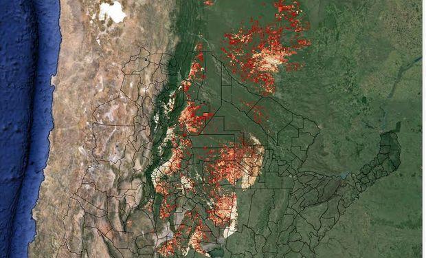 El sitio monitoreodesmonte.com.ar, desarrollado por la FAUBA, el INTA y la Redaf, brinda información online con los últimos datos de la deforestación, provistos por imágenes satelitales.