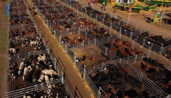 La ganadería de AgroActiva tendrá buen resguardo con los corrales de Farmquip