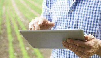 Claves para potenciar tu campo en maíz: consejos DONMARIO en Agrofy