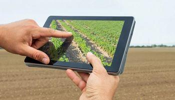 Censo Agropecuario: cómo contactar a tu censista