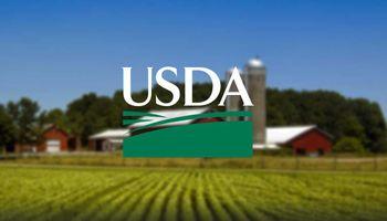 El mercado de granos se prepara para conocer los primeros datos del Outlook Forum