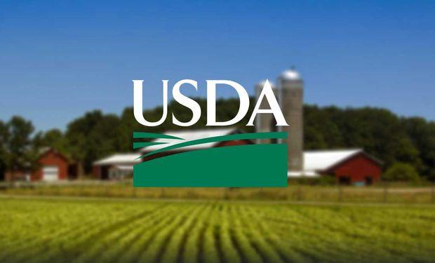 El mercado se anticipa a los pronósticos del Outlook forum del USDA.