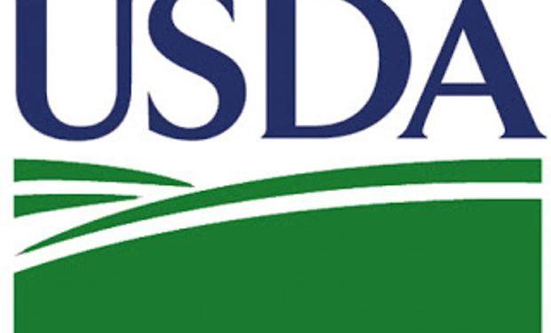El mercado espera el USDA