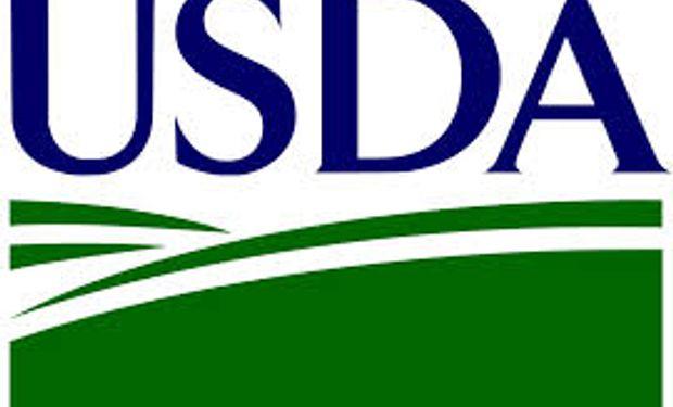 USDA aumenta la producción de maíz y recorta la de soja