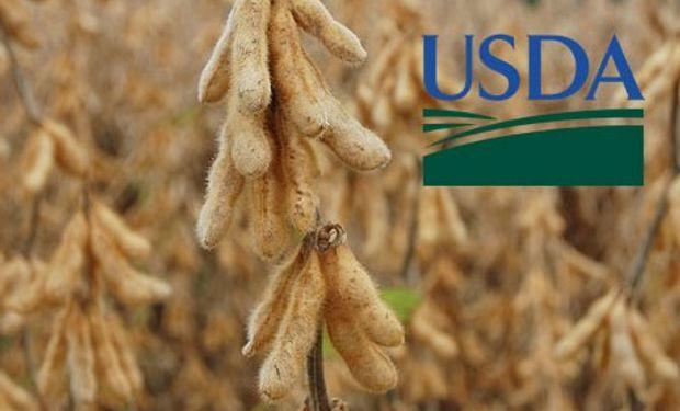 Llegaron los números del USDA de agosto.