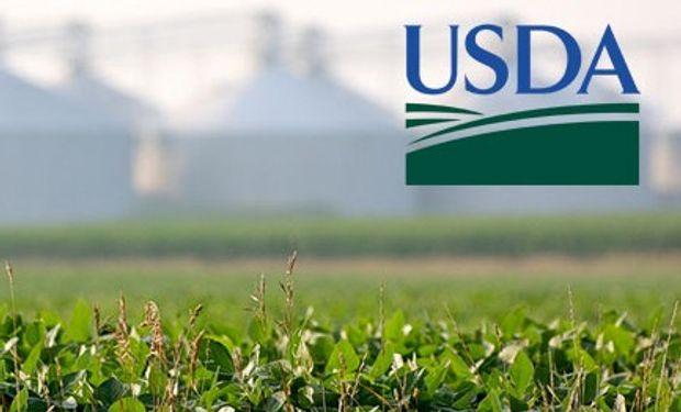 Expectativas para el USDA de Junio.