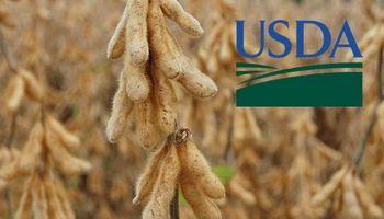 USDA: ¿la oferta se sigue ajustando?